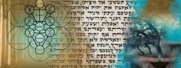 Energy of the Week: Tetzaveh