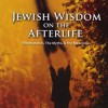 Jewish Wisdom of the Afterlife: The Myths, the Mysteries & Meanings