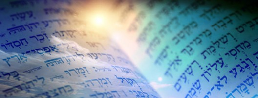 Baruch Sheamar: Continuous Creation