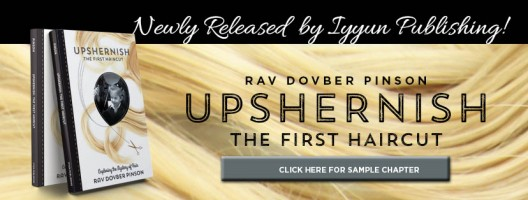 Newly updated and redesigned Upshernish book!