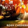 Ladies Rosh Chodesh Learning Group