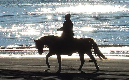 horse_and_rider_and_diamonds_2007